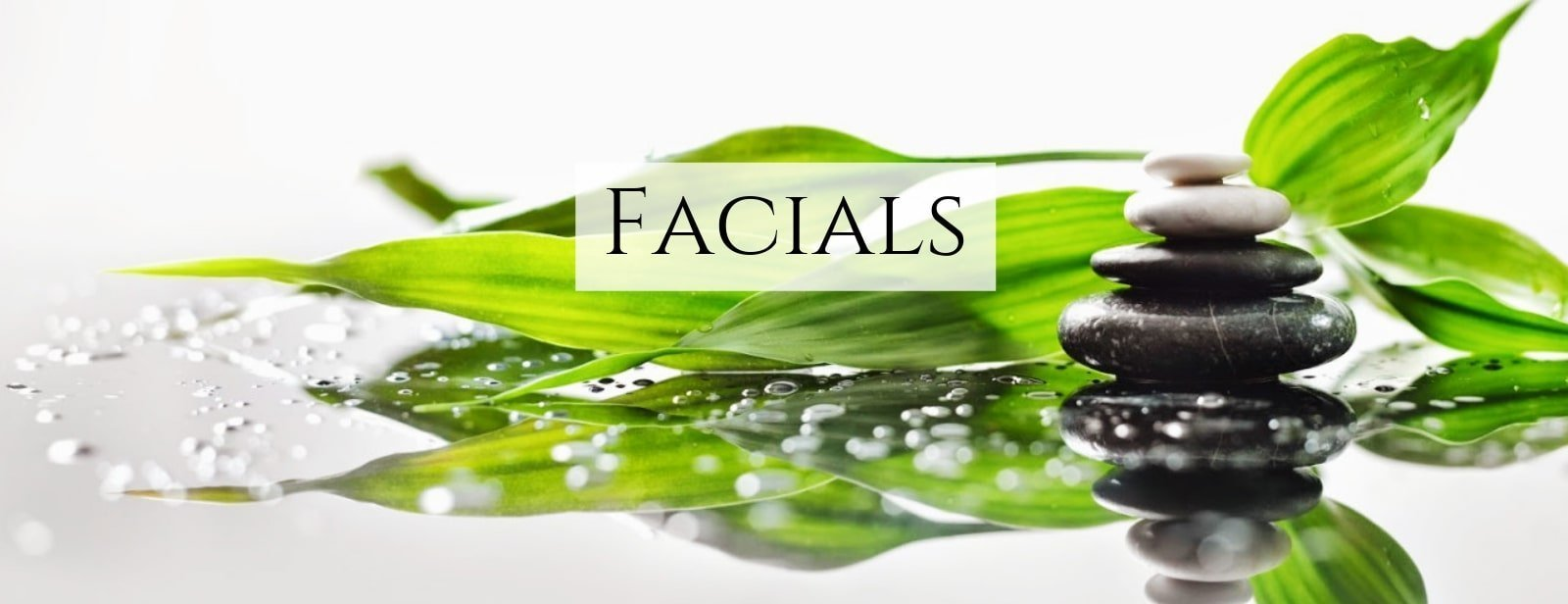 Facial spa: Smooth stones stacked with a green leaf background and water droplets to emulate the results of our facial, charleston sc